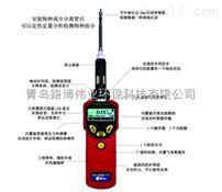 美国华瑞PGM-7360VOC气体检测仪