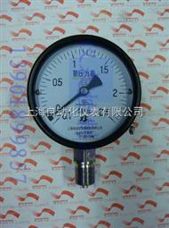 YA-100氨压力表0-1Mpa
