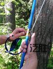 15-60厘米林业生长锥