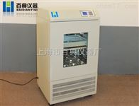 BHWY-2102C恒温摇床 上海