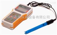 精密型电导率仪DDS-307 小型便携式电导率仪