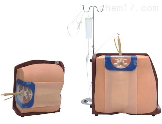 脊椎穿刺模型 临床综合专科