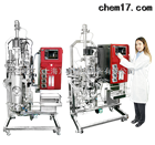 原地灭菌SIP生物反应器/发酵罐