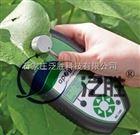 美国进口叶绿素仪