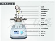 YZPR-100小型反应釜