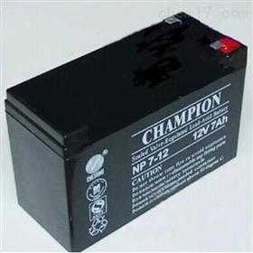*蓄电池NP7-12