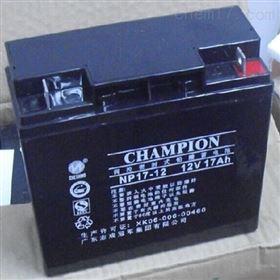 蓄电池NP17-12