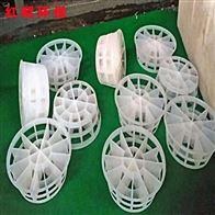 50型多面空心球填料