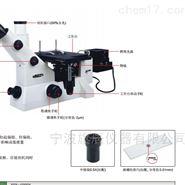 Insize双目金相显微镜ISM-M600