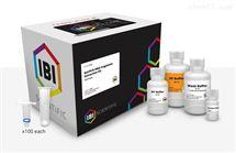 IB47020PCR Clean up和凝膠回收試劑盒