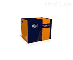 支原体qPCR检测试剂盒(探针法)