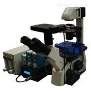 微流控器官模擬(細胞)培養系統