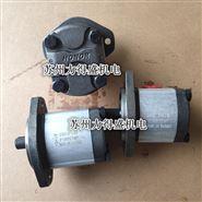 台湾力得盛HONOR齿轮泵1GG1P13R