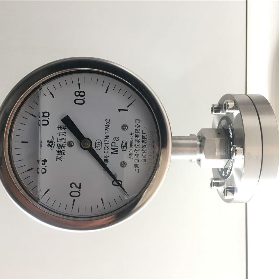 Y-100A/Z/MF(B)/316L不锈钢隔膜压力表