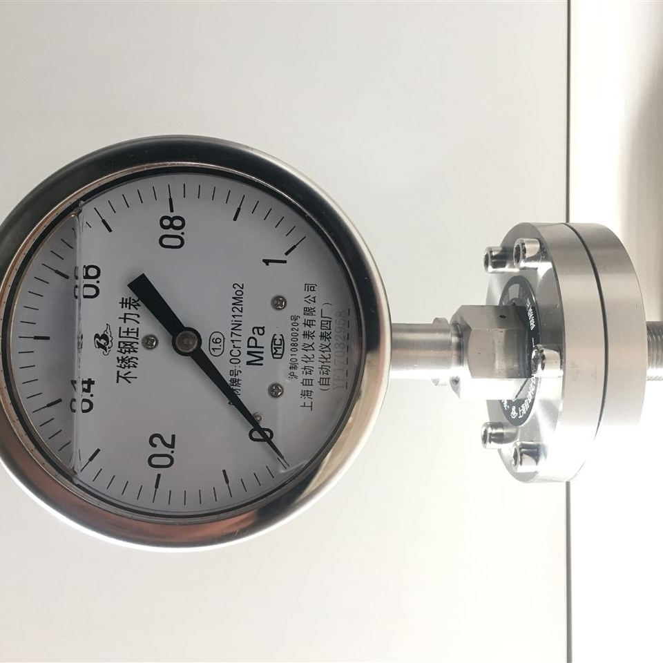 Y-100/ML(B)/316L不锈钢隔膜压力表