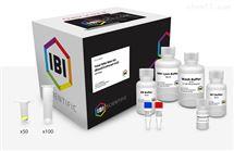 IB47321血液/細胞總RNA 提取試劑盒