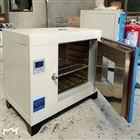 101-5FD实验烘箱/程控式300度鼓风干燥箱