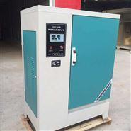 供应40型恒温恒湿养护箱