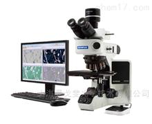 奧林巴斯金相顯微鏡