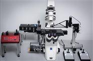 CellSorter全自動單細胞分選分析系統