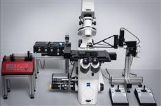 CellSorter全自动单细胞分选分析系统