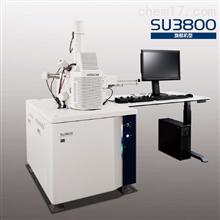 SU3800日立扫描电子显微镜