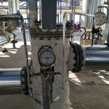 DXW2-PF电伴热保温施工