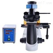 优选澳浦DSY5000X荧光显微镜