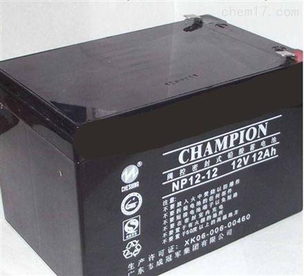 冠军蓄电池NP系列