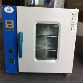 101-0A电热恒温鼓风干燥箱实验室试验箱