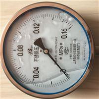 Y-163BFZ耐震压力表