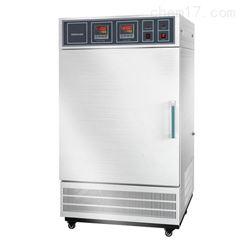 YW-1000GSH大型药品稳定性试验箱