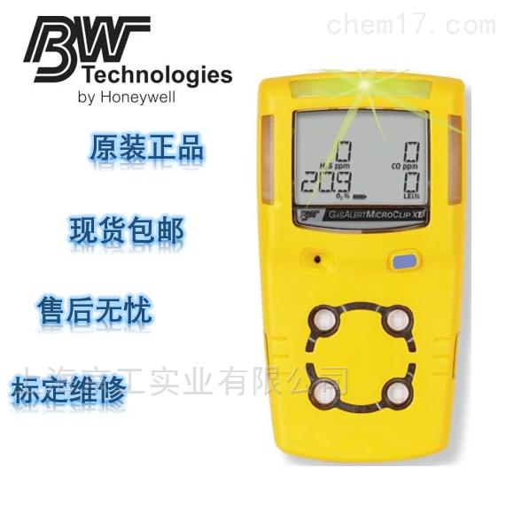 加拿大BW气体检测仪