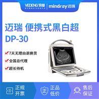 DP-30迈瑞全数字超声诊断系统