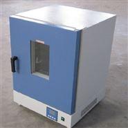 立式电热恒温鼓风干燥箱