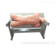 KAC/CK810综合穿刺术与叩诊检查技能训练模型