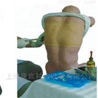 KAC/CK812胸腔(背部)穿刺训练模型