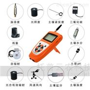 手持式气象仪(BNL-GPRS系列)