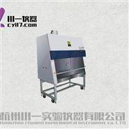 重庆生物安全柜BHC-1000IIB2排风100
