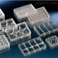 167008Nunc多孔细胞培养板