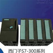 CPU模块6ES73172EK140AB0西门子S7-300