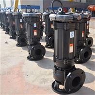 100-600WQ德能泵业潜污泵站 实际的应用区域