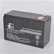 吉辰蓄电池JC12-80 12V80AH重量尺寸