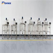 DFS-100L单层玻璃反应釜