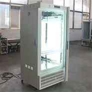LRH-100-G光照培养箱/珠江牌植物生长箱