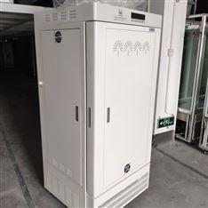 珠江牌LRH-100-Y药物稳定性试验箱