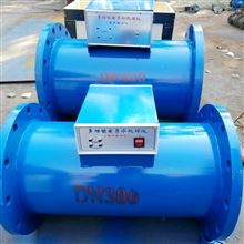 多功用微电子水处置器RXDZ-65气力厂家