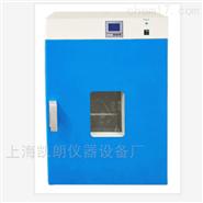 DHG-9245A 300℃立式电热恒温鼓风干燥箱