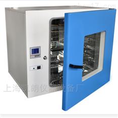 250℃电热恒温鼓风干燥箱DHG-9023A