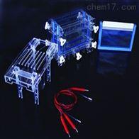 DYCZ-30C双板夹芯式垂直电泳仪电泳槽